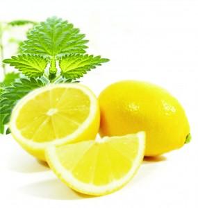 5239983_krapiva_i_limon (285x300, 17Kb)