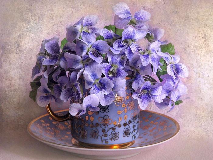 cvetochnye-kompozicii-foto-oboi-2 (700x525, 519Kb)