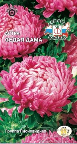 astra_sedaya_dama (266x493, 207Kb)