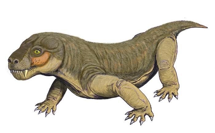 Незнакомая нам планета Земля, или Появление первых динозавров