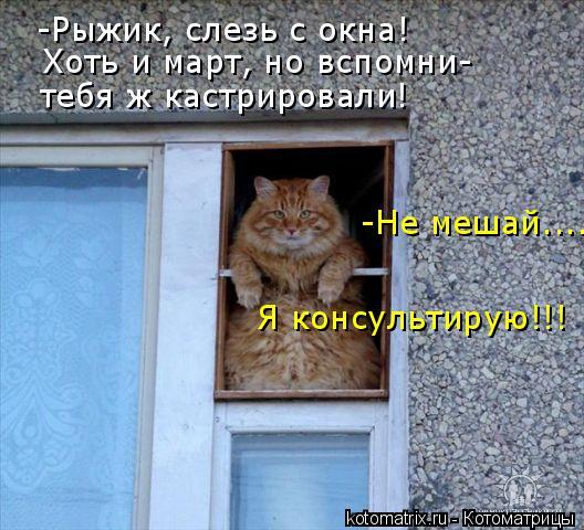 0_d6158_46b5b197_orig (528x480, 243Kb)