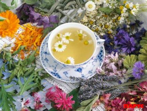 чай леч (500x377, 98Kb)