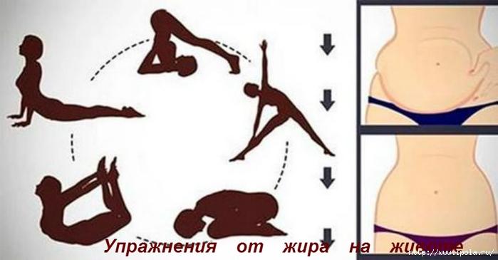 """alt=""""Упражнения от жира на животе""""/2835299__1_ (700x365, 126Kb)"""