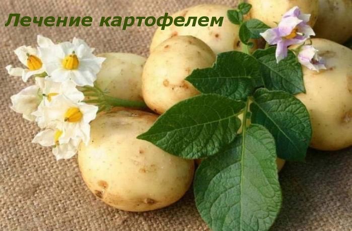 kartofel11 (700x459, 67Kb)
