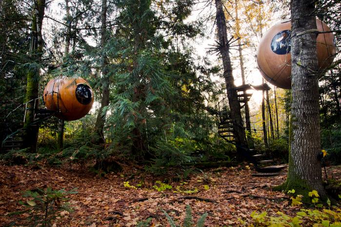 отель в лесу отель Free Spirit Spheres 1 (700x466, 627Kb)