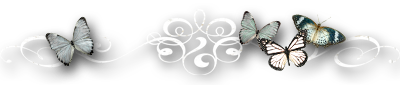 бабочки серо-голубые (400x85, 43Kb)