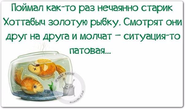 1458850837_frazki-6 (604x357, 157Kb)