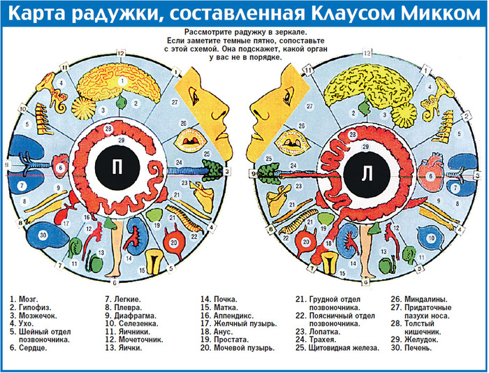 4897960_92396993_diagnostika_po_raduzhke_glaza (700x534, 255Kb)