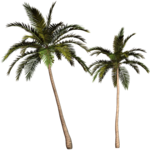 Превью Colorful Beach (114) (700x700, 376Kb)