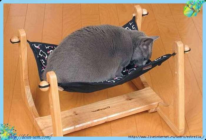 Из чего сделать кровать для кошки своими руками 996