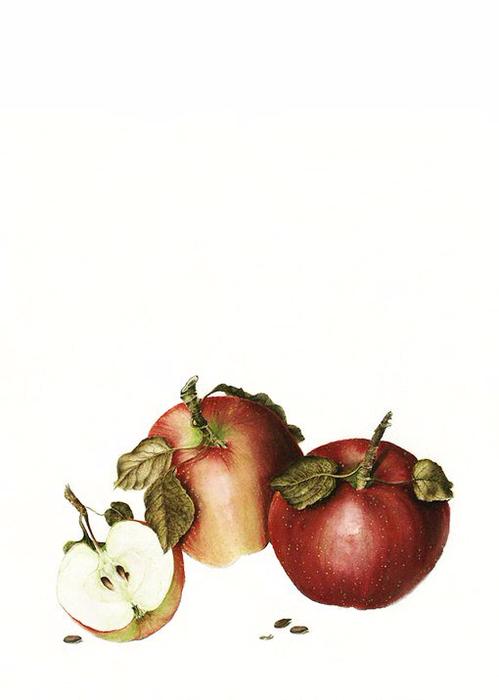 Доска Яблочный Джем 2 (499x700, 137Kb)