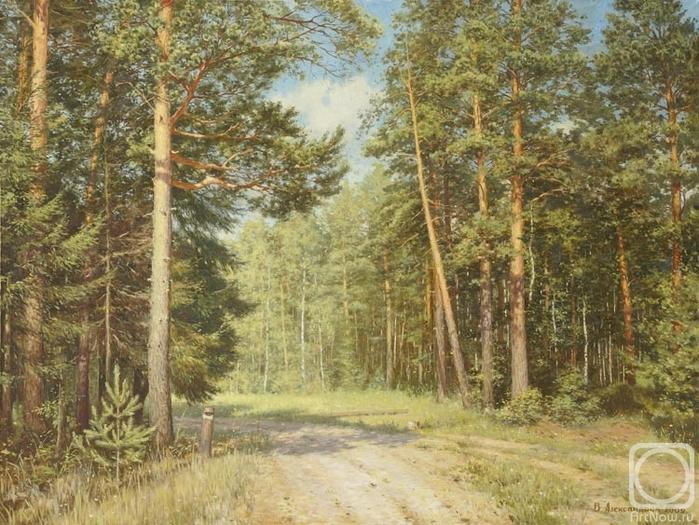 Дорога в лесу (700x525, 331Kb)