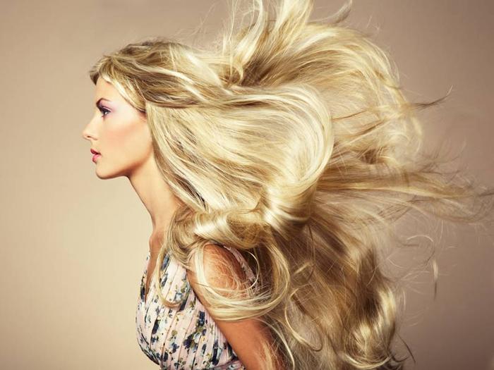 hairspliss (700x525, 281Kb)