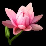 Превью SpringFriends (6) (619x625, 229Kb)