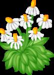 Превью SpringFriends (16) (449x618, 177Kb)