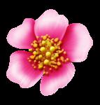 Превью SpringFriends (50) (597x625, 257Kb)