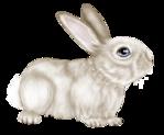 Превью SpringFriends (58) (650x535, 272Kb)