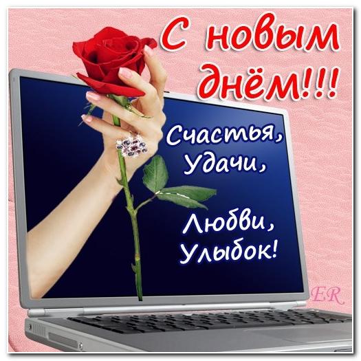 3470549_den_nov (525x525, 208Kb)