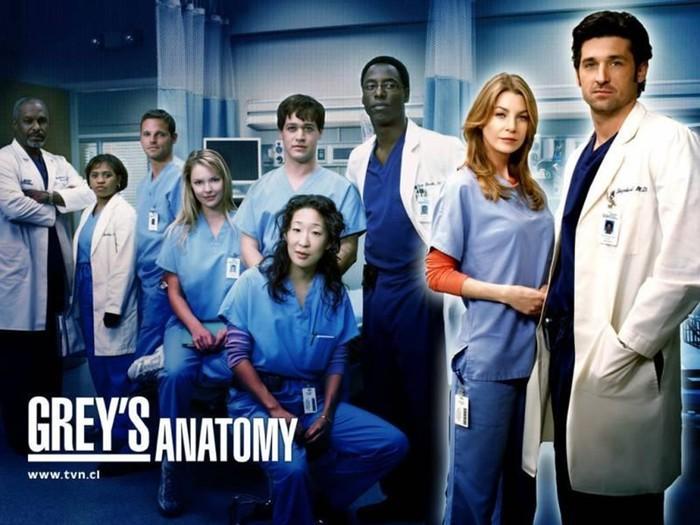 Сюжет сериала «Анатомия страсти» (Grey's Anatomy— 13 сезон начался)