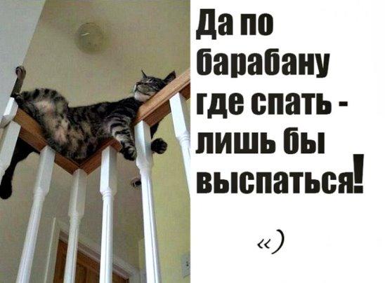 imageIL50ZT8Aбарабан (548x404, 34Kb)