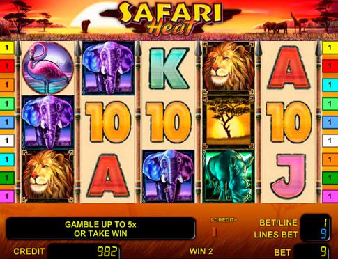 2. Safari Heat (485x372, 257Kb)
