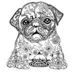 Превью dog 12 (600x600, 292Kb)