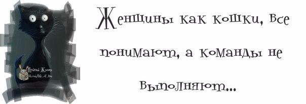 1371065232_frazki-13 (604x207, 59Kb)