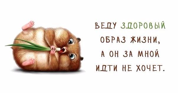 1371065262_frazki-5 (604x317, 102Kb)
