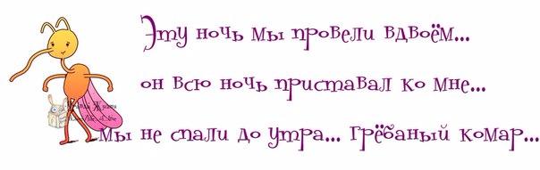 1371065268_frazki-10 (604x191, 91Kb)