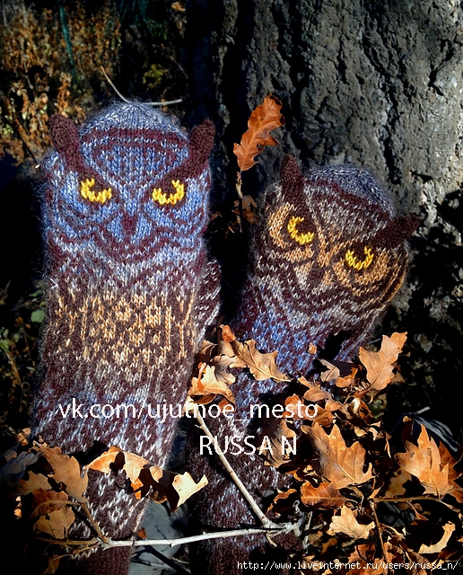 blue_owl5_medium2 (516x640, 433Kb)