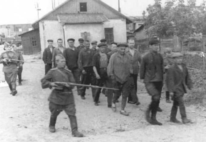 Как совесткие уклонисты и дезертиры не хотели воевать с фашисткой Германией