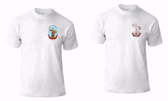 футболка белорусь (700x418, 68Kb)