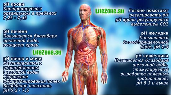 че полезно закисление организма для суставов и остеохондроза