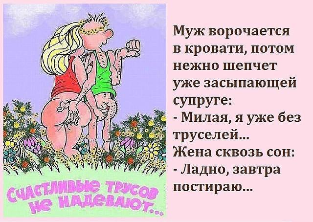 3416556_image_1 (640x454, 106Kb)