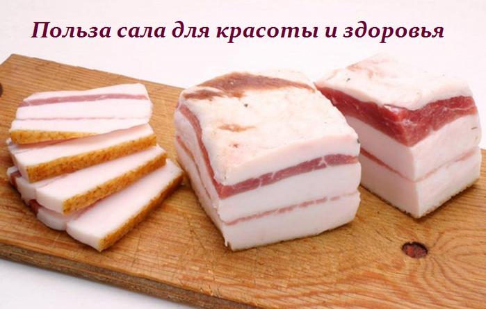 2749438_Polza_sala_dlya_krasoti_i_zdorovya (700x445, 397Kb)