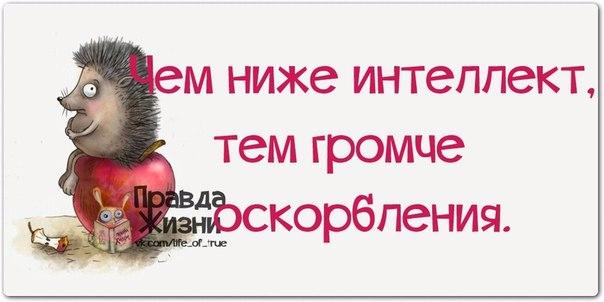 1396466645_frazochki-4 (604x302, 119Kb)