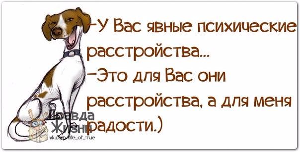 1396466675_frazochki-3 (604x307, 160Kb)