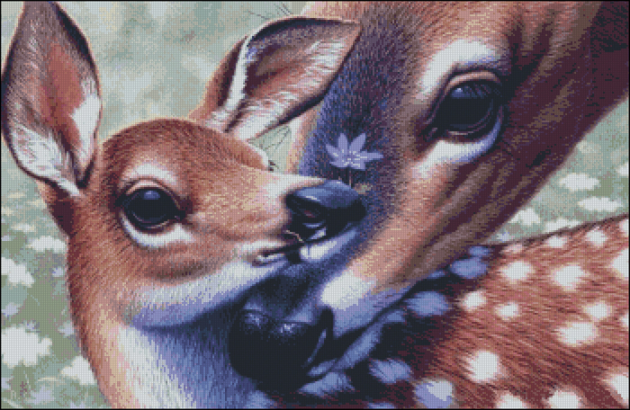 Tenderness (700x456, 490Kb)