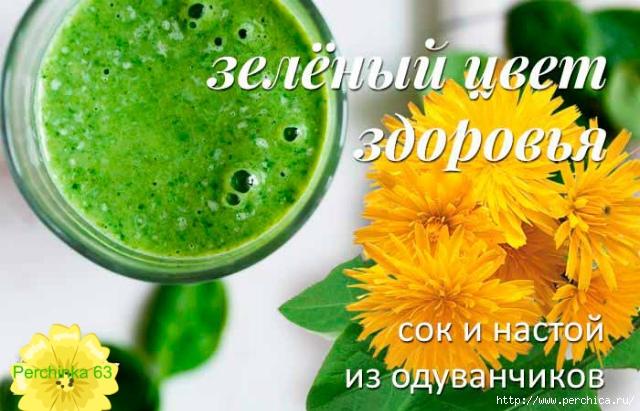 4979645_oduvanchik05 (640x411, 220Kb)