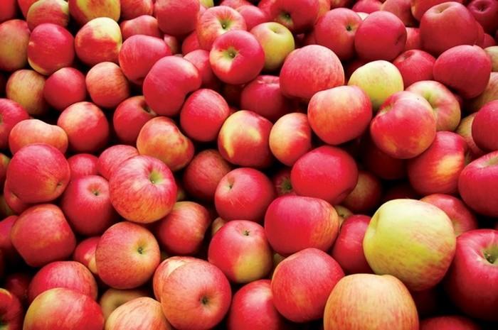 Распространенные ошибки хранения продуктов, из-за которых мы их теряем раньше срока