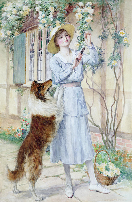 picking-rosas-William-Henry-Margetson (459x700, 449KB)