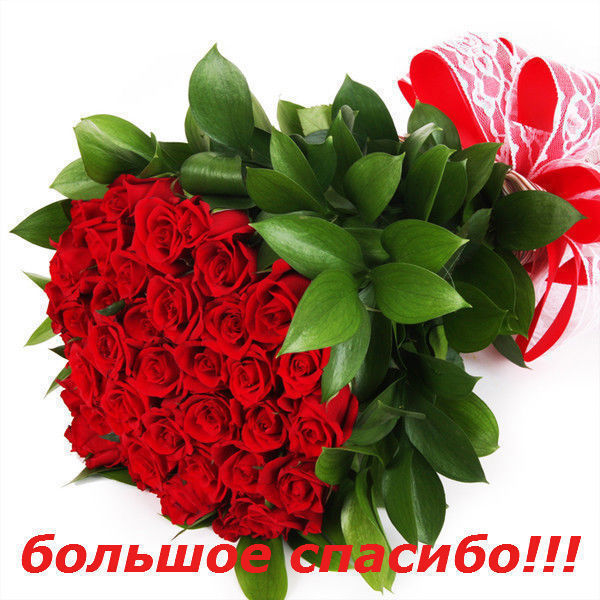 Bolshoe_spasibo (600x600, 93Kb)