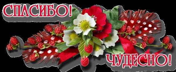 0_bbe28_a13ce380_XL-спасибо (600x247, 295Kb)