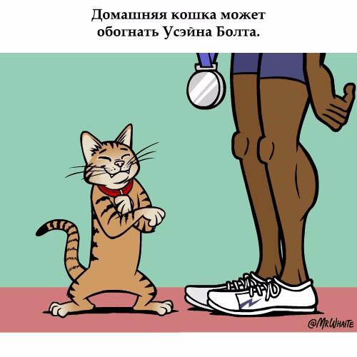 www.radionetplus.ru 15 (500x500, 150Kb)