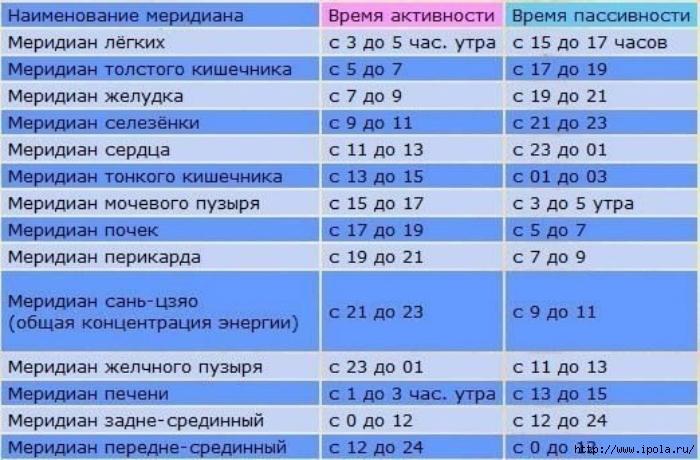 "alt=""Жизнедеятельность человеческого организма по часам!""/2835299_Jiznedeyatelnost_chelovecheskogo_organizma_po_chasam3 (700x460, 247Kb)"