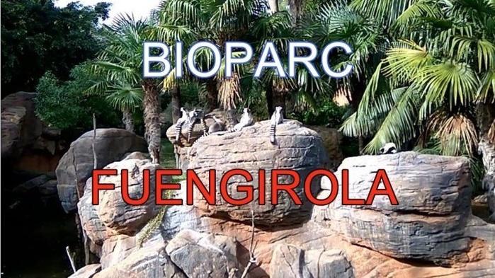 Биопарк Фуэнхирола Bioparc Fuengirola/2178968_bioparc_fuengirola (700x393, 159Kb)