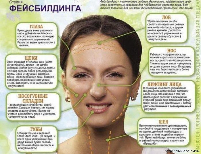 "alt=""Фейсбилдинг для лица – источник вечной молодости!""/2835299_Feisbilding_dlya_lica__istochnik_vechnoi_molodosti (700x538, 240Kb)"