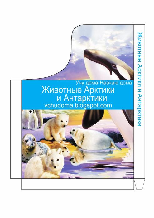 ДК Животные Арктики и Антарктики-15 (494x700, 233Kb)