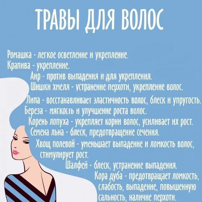 3925311_travi_dlya_volos (700x700, 298Kb)