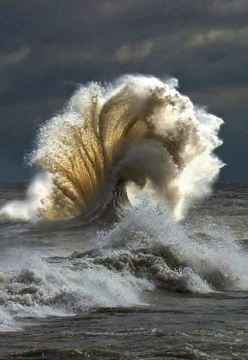 океан. мощь и сила/5047392_ (484x700, 46Kb)